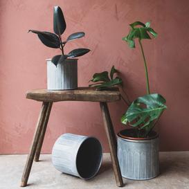 image-Set of Three Belgrave Planters