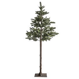 image-Danville Christmas Tree
