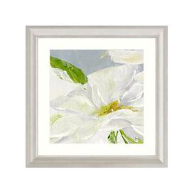 image-Susan Pepe - Single Daisy Framed Print & Mount, 68.5 x 68.5cm