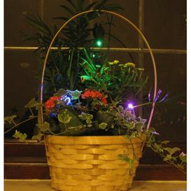 image-LED Floral Fairy Light Sol 72 Outdoor Bulb Colour: Red