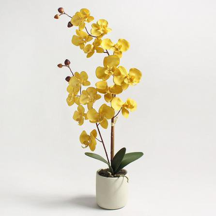 image-Artificial Orchid Ochre in Grey Pot 56cm Ochre