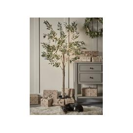 image-NEW Indoor Outdoor Pre-Lit Faux Olive Tree