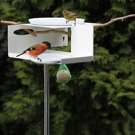 image-Bird House Sol 72 Outdoor