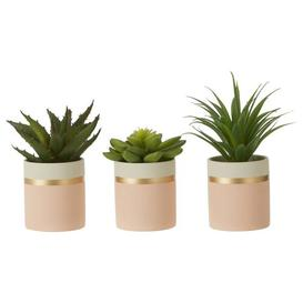 image-3 Artificial Succulent Plant in Pot Set Canora Grey Container Colour: Pink/White