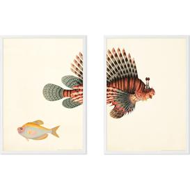 image-Vintage Fish Illustration from the Natural History Museum Set of 2 Framed Wall Art Prints A3, Multi