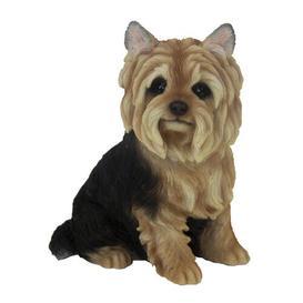 image-Wilber Yorkshire Terrier Sitting