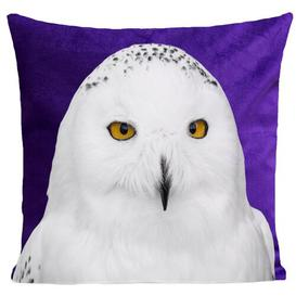 image-Rollins Snowy Owl Cushion Cover Union Rustic Colour: Deep Purple