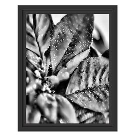 image-Christmas Star Blossoms Framed Art Print East Urban Home