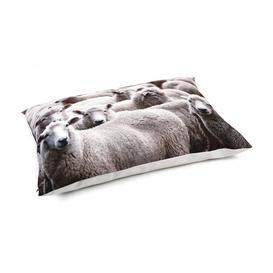 image-Maximo Pillow in Grey Archie & Oscar