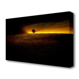 image-'Lonely Tree At First Light Landscape' Photographic Print on Canvas East Urban Home Size: 101.6 cm H x 142.2 cm W