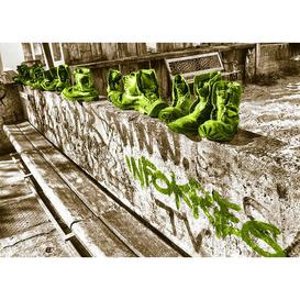 image-Landscapes Shoes Graphic Art in Light Green East Urban Home Size: 35.7 cm H x 50 cm W x 0.5 cm D