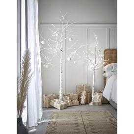 image-Indoor Outdoor Magical Light Up Birch Tree - 180cm