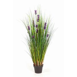 image-Frederica Floor Lavender Grass in Pot artplants.de Size: 120cm H x 60cm W x 60cm D