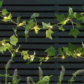 image-Argos Home 20 Ivy Solar String Lights