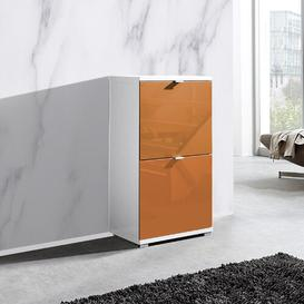 image-Espinoza 8 Pair Shoe Storage Cabinet Ebern Designs Finish: Orange