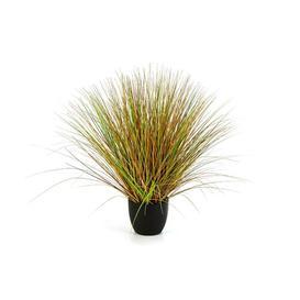 image-Florian Switchgrass Floor Grass in Pot artplants.de Size: 65cm H x 65cm W x 65cm D, Flower/Leaves Colour: Green/Brown