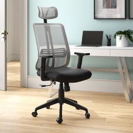 image-Ergonomic Mesh Executive Chair Symple Stuff Colour: Grey