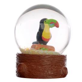 image-Toucan Waterball Snow Globe