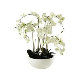 image-potted artificial orchid H 98cm