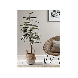 image-Faux Potted Rubber Plant