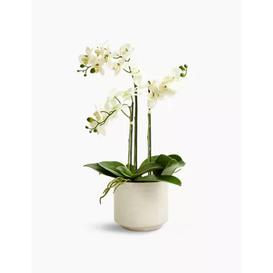image-M&S Artificial Large Orchid Plant - 1SIZE - Pink, Pink