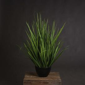 image-Large Field Floor Foliage Grass in Pot Hill Interiors