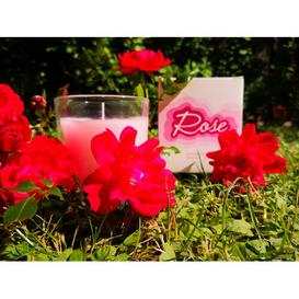 image-Rose Scented Jar Candle The Party Aisle Size: 9cm H x 8cm W x 8cm D