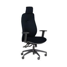 image-Budde Ergonomic Desk Chair Ebern Designs Frame Colour: Black, Upholstery Colour: Black