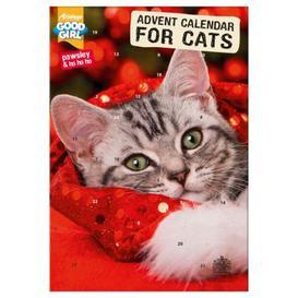 image-Advent Calendar For Cats
