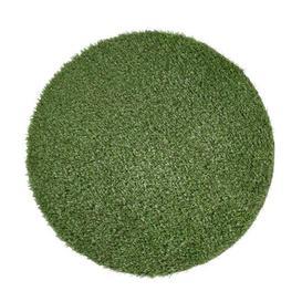 image-Sansibar Green Indoor/Outdoor Rug Andiamo Rug Size: Round 200cm