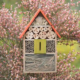 image-Sanya Insect Hotel Hanging Butterfly and Ladybird House Dakota Fields Colour: Orange