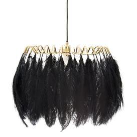 image-Black Feather Pendant Light