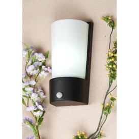 image-Rubin 1-Light Wall Light Sol 72 Outdoor Finish: Charcoal, Features: Motion Sensor