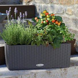 image-Balconera Self-Watering Balcony Planter Lechuza Colour: Granite, Size: 19 cm H x 50 cm W x 19 cm D