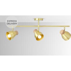 image-Albert Spotlight Bar Lamp, Brushed Brass & Light Wood