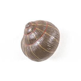 image-Snail Sleeping Hook - / Snail - Resin by Seletti Multicoloured