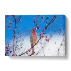 image-'House Finch Bird' Painting on Wrapped Canvas East Urban Home