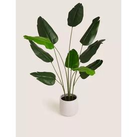 image-M&S Floor Standing Artificial Banana Leaf Plant - 1SIZE - Green, Green