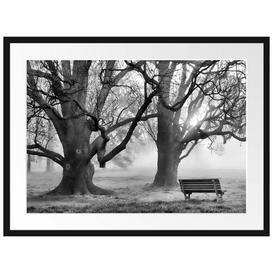 image-Tree and Bench in Fog Framed Photographic Print East Urban Home Size: 60cm H x 80cm W